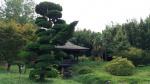 Jardin d'Anduse.jpg